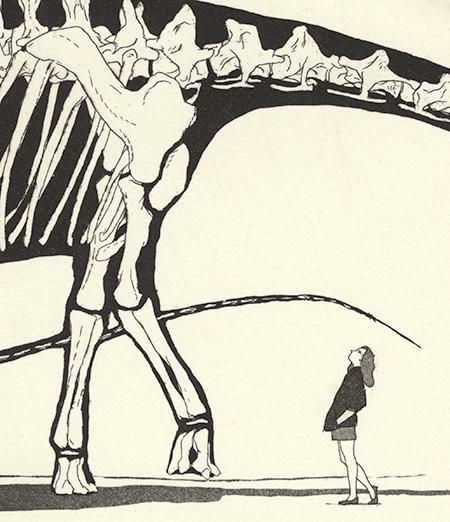 Diplodocus – Gravura