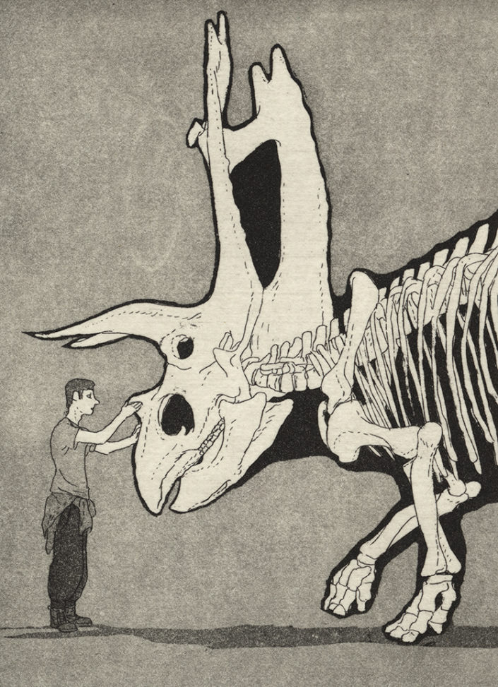 Titanoceratops – Gravura