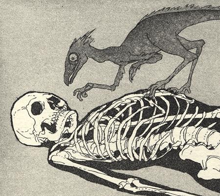 Homo Sapiens - Gravura